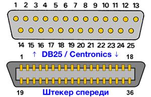 image-0-300x194