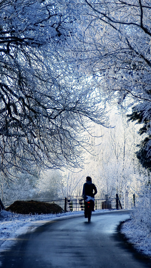 Download-Winter-Iphone-Backgrounds-2