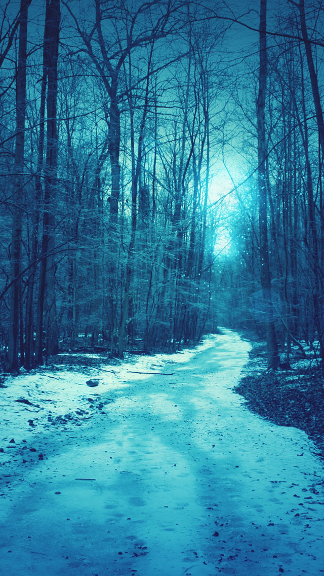 Download-Winter-Iphone-Backgrounds-3