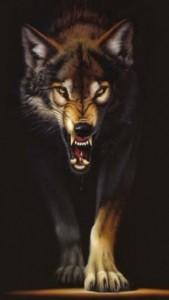 Скачать обои для iPhone - Волк