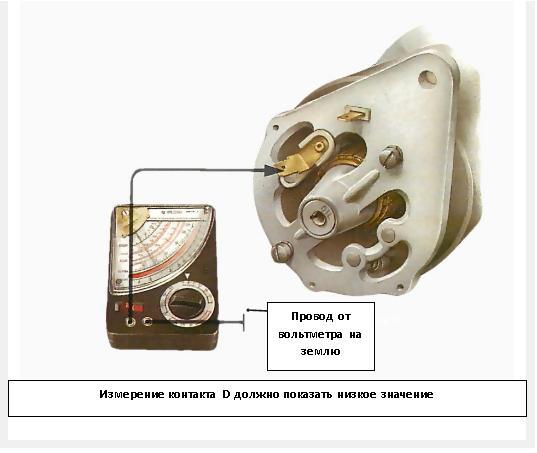 Динамо 41